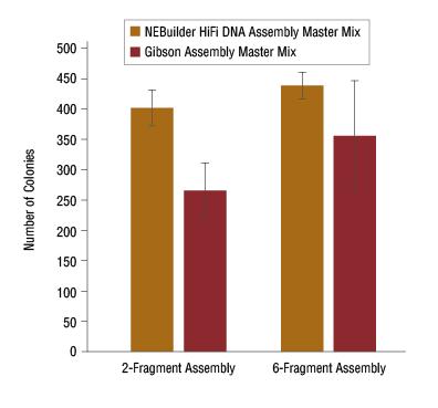 NEBuilder HiFi DNA Assembly - New England Biolabs